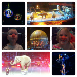 Ringling Brothers and Barnum & Bailey Circus Presents DRAGONS!