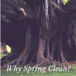 Why Spring Cleaning?